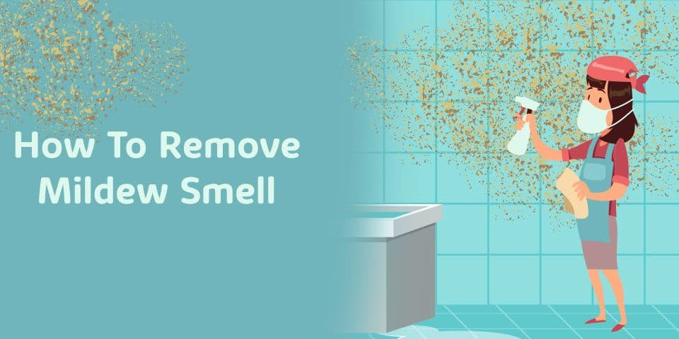 Remove mildew smell