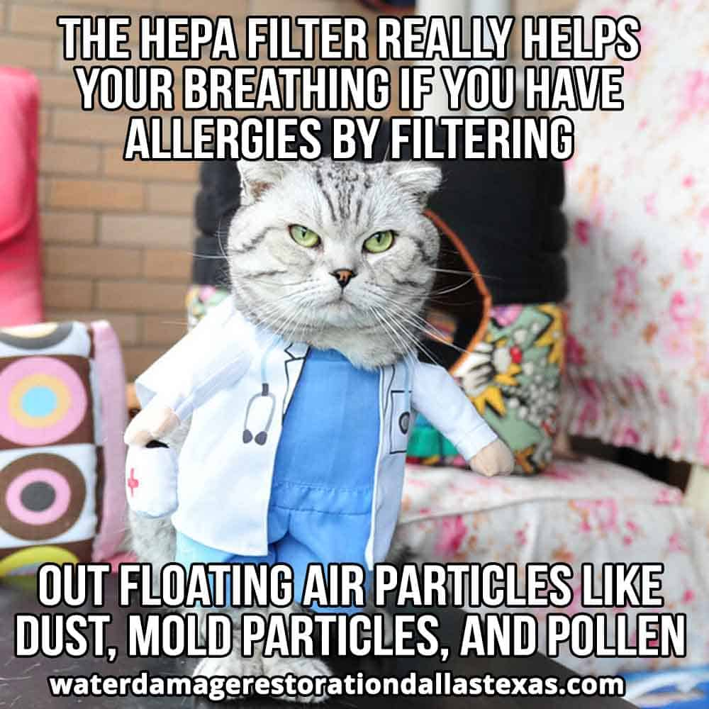 get rid of pollen with correct filter type