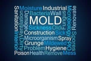 Rectangel mold words