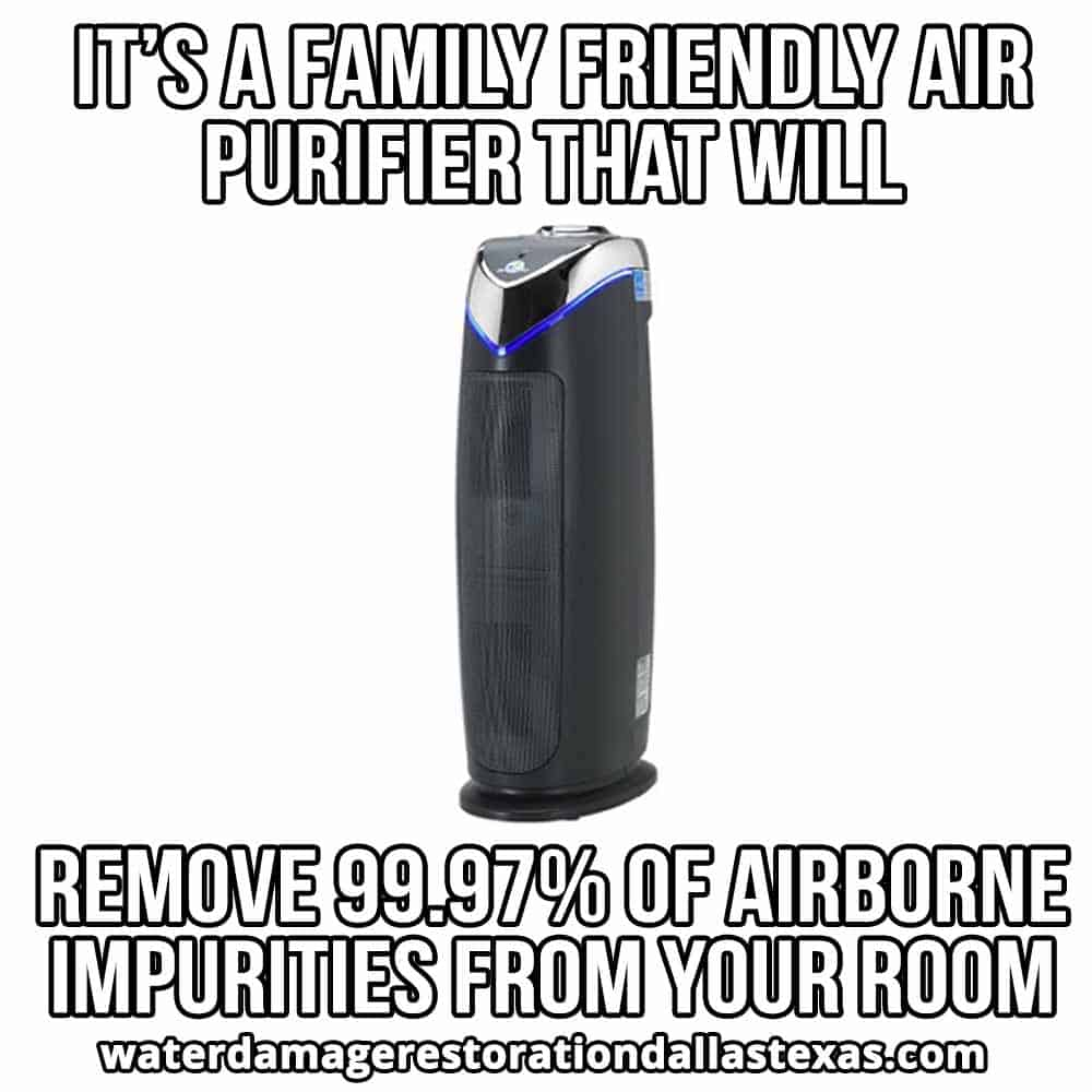 ac4825 is a Friendly Air purifier