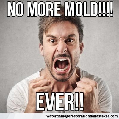 no more mold! Ever!