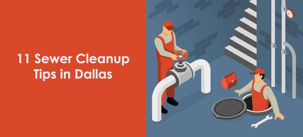 best cleanup tips in dallas area