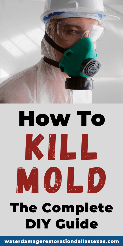 Mold can be hazardous to your health, and even deadly to young infants and seniors.
